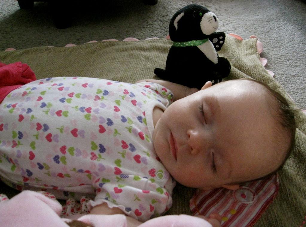 Greta sleeping on her new blankie...