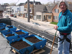 Volunteer Tom Brandstetter stands by Future Green's new rooftop garden barrels, with Kinnickinnic Avenue beyond to the south. ~photo Michael Timm