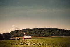 Midwestern Abundance (Loren Zemlicka) Tags: blue trees summer sky green field june wisconsin barn rural landscape photography countryside photo midwest farm country picture silo rows crop land agriculture 2009 canonef1740mmf4lusm rolling cultivation cultivate mazomanie hil canoneos5d flickrexplore lorenzemlicka
