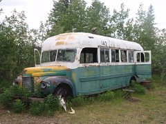 The Magic Bus (ErikHalfacre) Tags: alaska hiking hike healy magicbus internationalharvester christophermccandless intothewild stampedetrail chrismccandless bus142 stampederoad
