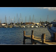 Rockport Texas (Eduardo Muriedas) Tags: maana sailboat canon boats eos pier muelle boat early us dock barco texas barcos sailboats velero veleros gulfofmxico matinal rockporttexas temprano drsena matutinal 40d golfodemxico atracadero canoneos40d eduardomuriedas aransascountytexas