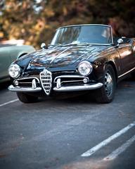 Alfa (Splat Worldwide) Tags: auto california car canon vintage eos rally tahoe snowball alfaromeo giulietta 5dmkii snowballrally
