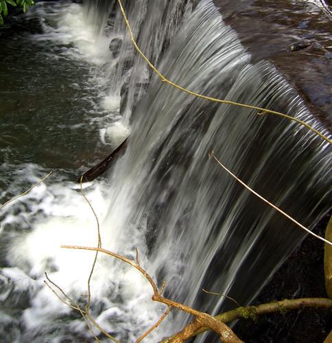 Mill dam Dumfries house 15Feb09