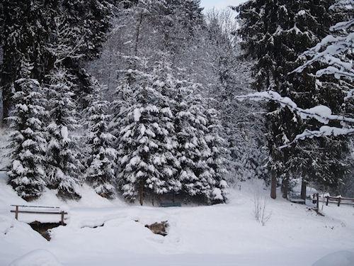 WL Winter09h