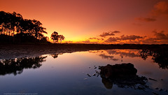 Where'd the sun go? (Matthew Stewart | Photographer) Tags: trees sunset reflection matthew engine australia brisbane stewart qld queensland block mangroves breathtaking colaborador thornside breathtakinggoldaward vosplusbellesphotos breathtakinghalloffame