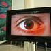 "Tajinder's eye • <a style=""font-size:0.8em;"" href=""http://www.flickr.com/photos/23950162@N05/3316192172/"" target=""_blank"">View on Flickr</a>"