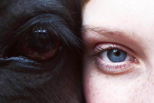 olhosnosohlos