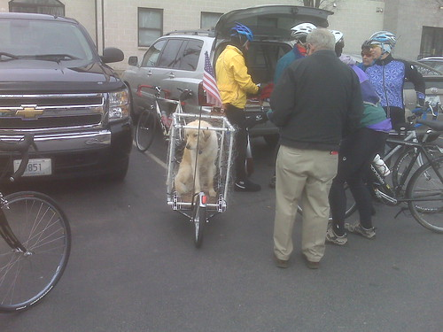 Pup-cycle...