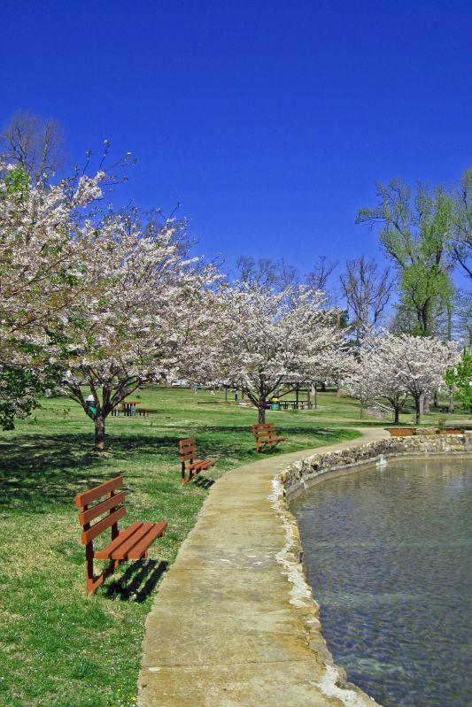 Janssen Park In Spring 4