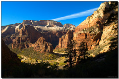Angel's Landing and the Virgin River from the Observation Point Trail, Zion National Park - don j schulte @ oxherder arts