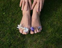Happy Earth Day (sosij) Tags: daisies toes sigh digits anenome earthday tootsies forgetmenots candytuft mylawn marchequinox greengrassandbarefeet howlovelythedaywastoday