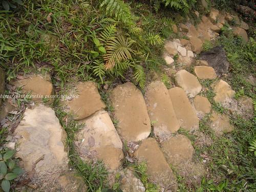 你拍攝的 4步道石階。