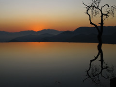 """Mexico, """"Infinity Pool"""" """"Hierve El Agua"""" Before Sunrise, Oaxaca, Mexico (Marie-Marthe Gagnon) Tags: mountains reflection tree water pool forest mexico early natural oaxaca 100 fabulous chiapas 900 infinitypool lonelytree biodiversity hierveelagua posterproject flickrchallengegroup flickrchallengewinner theunforgettablepictures theperfectphotographer world100f ancientforests absolutelystunningscapes mpdquebec bestcapturesaoi mariegagnon mariemarthegagnon elitegalleryaoi marculescueugendreamsoflightportal"""