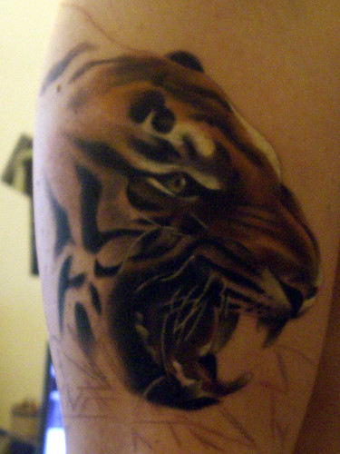 Excellent Tiger Tattoo