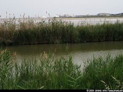 Aigues-Mortes (Jipem) Tags: voyage city trip travel france salt marsh sel marais ville excursion gard camargue aiguesmortes languedocroussilon