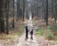 The Birth of a Cunning Plan (tokek belanda (very busy)) Tags: people holland boys kids forest children landscape tim child beek path nick pad explore bos achterhoek landschap gelderland montferland zeddam