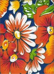 chita (Minhas Crias) Tags: flores chita tecido
