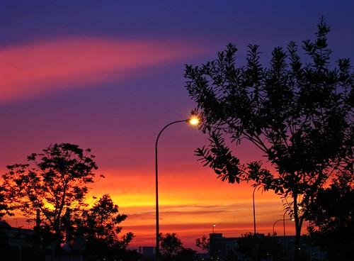 フリー画像| 人工風景| 街灯| 夕日/夕焼け/夕暮れ|        フリー素材|