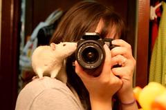 Kissing the camera (Honey Pie!) Tags: camera espelho canon mirror rat kiss beijo explore schroeder cmera fancyrat ratazana explored kissingthecamera melinadesouza beijandoacmera