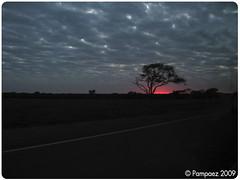 Amanece en Entre Ros.. (Pamzi ) Tags: amanecer entrerios
