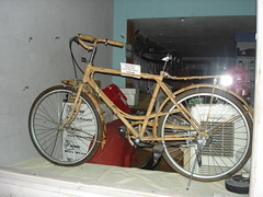 Bamboo Bicycle - with flash