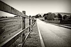(andrewlee1967) Tags: road uk england blackandwhite bw sepia fence dof sheep britain yorkshire hills gb verge holme sigma1020mm blurriness andrewlee 50d andrewlee1967 canon50d
