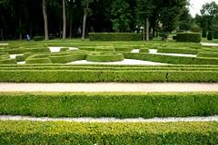 (Эйнар) Tags: garden bialystok bjalistoko