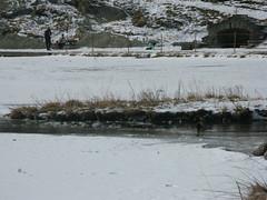 IMG_1440 (Luigi Tangana) Tags: nieve nuria 2008 vall