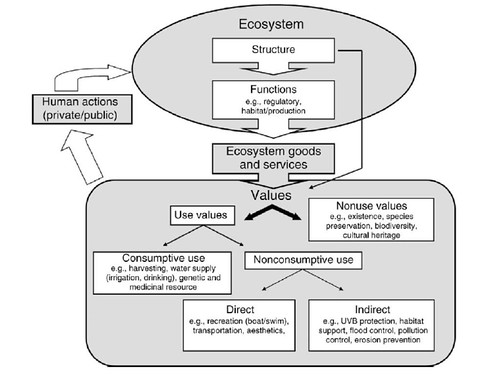 Barbier et al. 2011. Fig. 2.