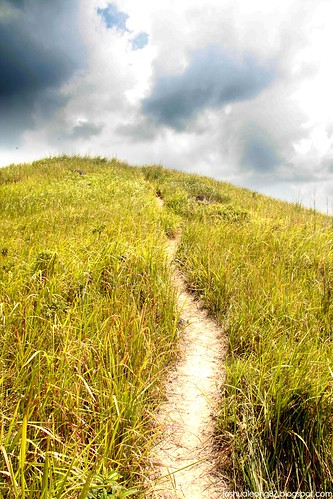 Broga hill 6