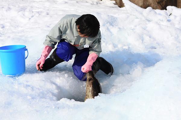 2009北海道-D5-3-旭山動物園_56.jpg