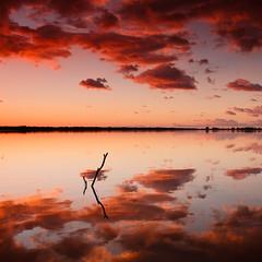 """Pink is my favorite crayon"" (gab 79) Tags: pink sunset lake clouds reflections lago tramonto cloudy rosa latina riflessi canonef1740mmf4lusm italians fogliano nubi ogm cokin gnd superaplus aplusphoto theunforgettablepictures goldstaraward goldenart sensationalphoto inspiredbyyourbeauty"