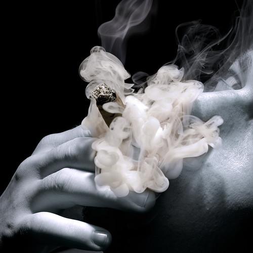 077|365 Cigar ~ Smoke