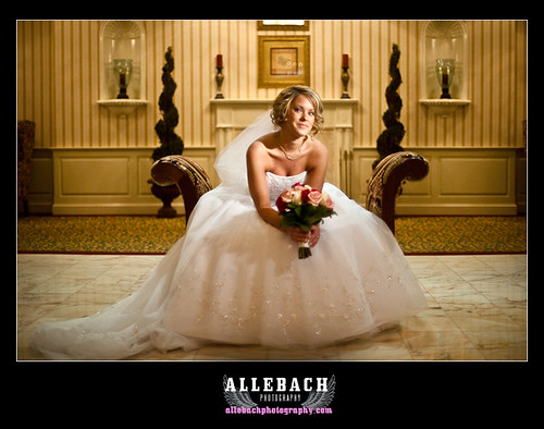 The Bride at Springmill Manor Ivyland, Pa