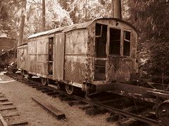 Camp 6 Railroad car