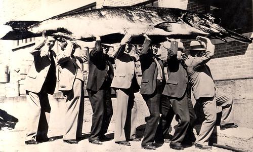 Joke Photograph: Rotarians Holding Pat Rood's 500 Pound Salmon