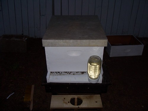 completely installed hive