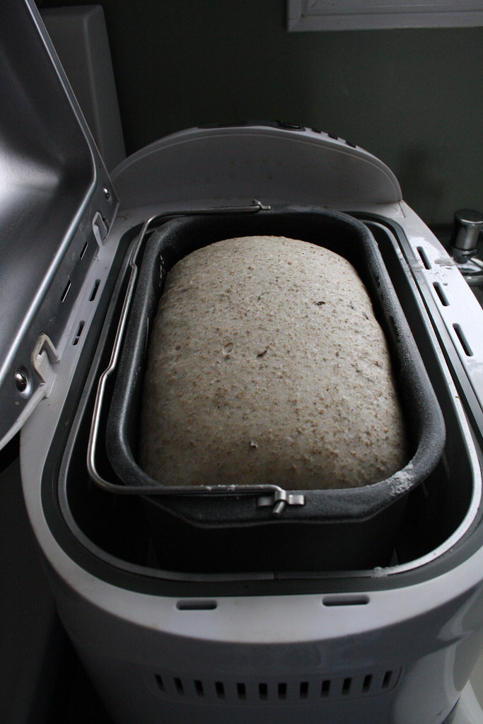 Caraway Rye Bread Dough