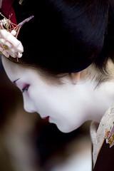 Maiko Ichiteru,profile (Onihide) Tags: kyoto kamishichiken ichiteru maikoart