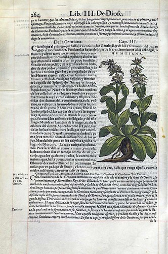 017- De la Genciana-Pedacio Dioscorides Anazarbeo 1555