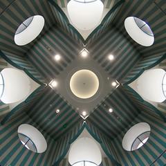 Rosette (Seldom Scene Photography) Tags: light building architecture geotagged stripes library central denver ceiling fisheye dpl 80mmf35 doorsopendenver2009