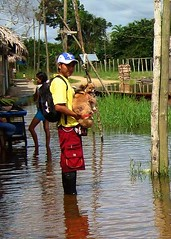 Harry carries a dog to safety:  Flooding at shelter / Harry cargando a un perro a un lugar mas seguro, y lejos de la inundacion (AmazonCARES) Tags: rescue peru latinamerica animals amazon flooding rainforest perro disaster animalrescue volunteer iquitos humanesociety animalshelter amazoncares nokillshelter