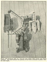 Two-row corn picker