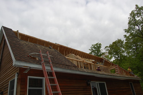 Day 8 - Cutting Out The Roof