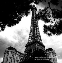PARIS VEGAS THROUGH THE TREES