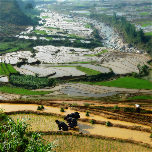 Awesome view of our livelihood