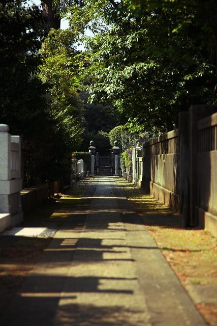 墓地の細道
