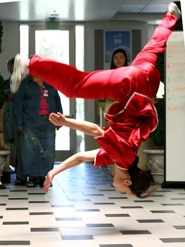 Awesome kung fu flip picture by richardmasoner