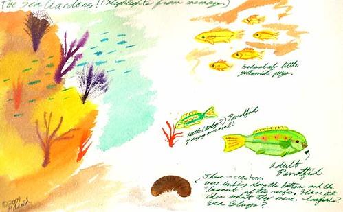 5.25.09 - The Sea Gardens