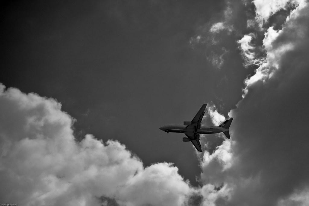 Plane Love (3 of 4)